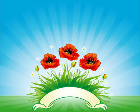 Background with poppy and banner  Vector