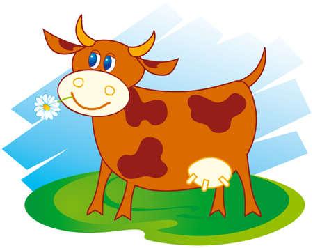 farmyard: Cute cow