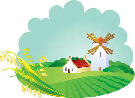 oat: Rural background with windwill and ears  Illustration