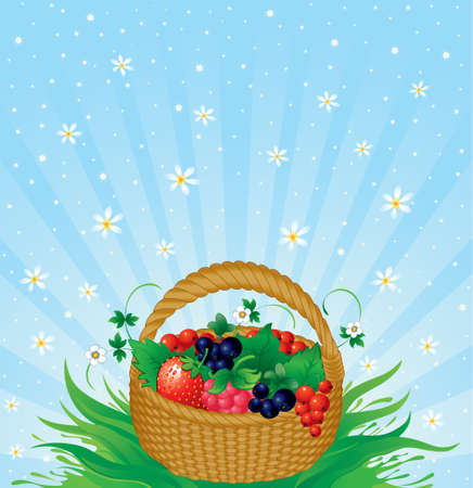 Basket with berries on a green grass  Vector