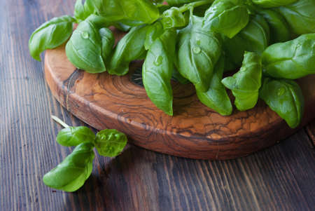 italian cusine: Bunch of fresh basil, olive cutting board at rustic wooden background