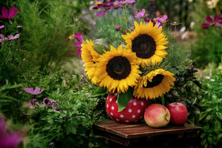 Beautiful flowers in the garden, Sunflowers in the vase and fresh apples Archivio Fotografico - 111740931