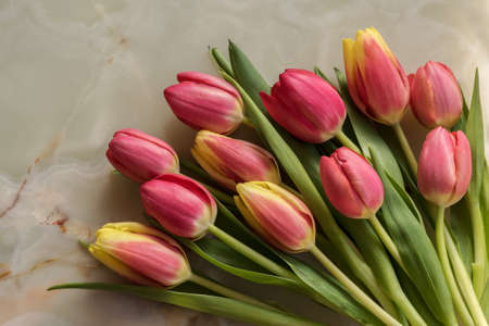Beautiful spring tulips at marble background Archivio Fotografico - 125805566
