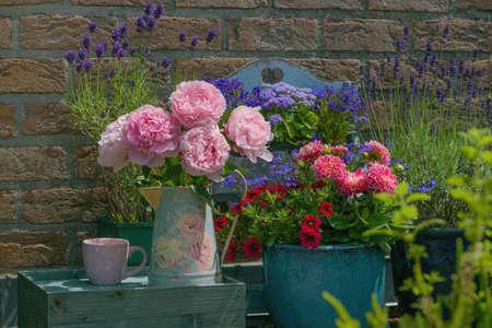 Beautiful multicolored flowers in pot, floral decor near house Archivio Fotografico - 131602742