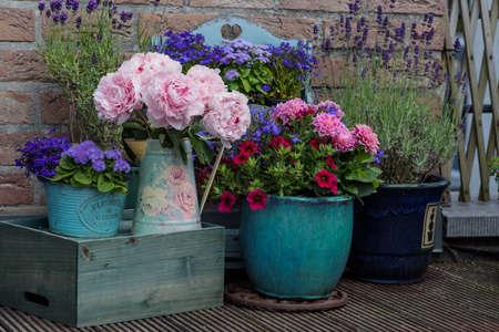 Beautiful multicolored flowers in pot, floral decor near house Archivio Fotografico - 131602678