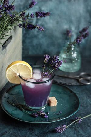 Summer fresh Lavender drink with lemon Archivio Fotografico - 131757397
