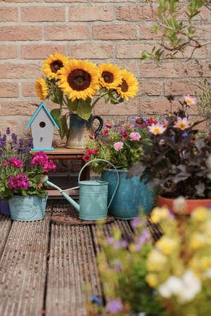 Beautiful flowers in pot near brick wall outside, Autumn decor with sunflowers Archivio Fotografico - 131757815