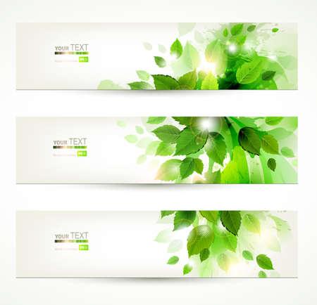 medio ambiente: conjunto de tres banderas con hojas verdes y frescas