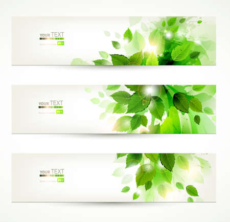 ecology  environment: set of three banners with fresh green leaves