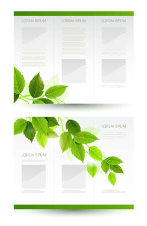 vector design of eco booklet with branch of fresh green leaves  Vector