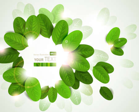 summer design with fresh green leaves Stock Vector - 14225894