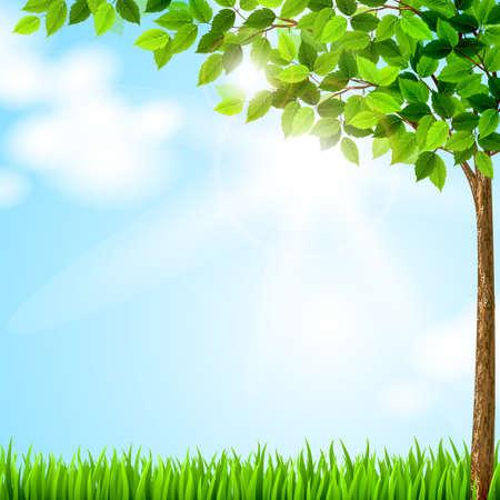 Baum mit grünen Blättern wächst auf der Lichtung Vektorgrafik