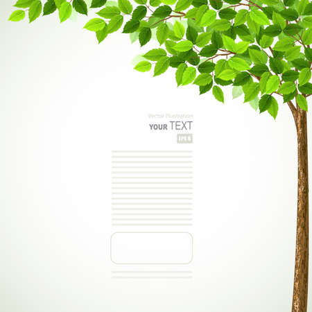 blank brochure: Season tree with green leaves