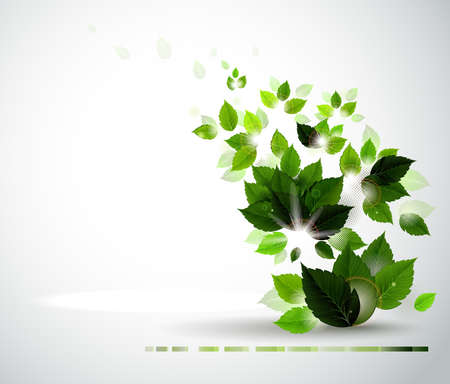 Summer branch with fresh green leaves Stock Vector - 14437943
