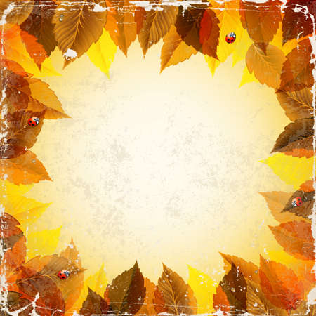 frame with autumn leaves and ladybirds  Vector