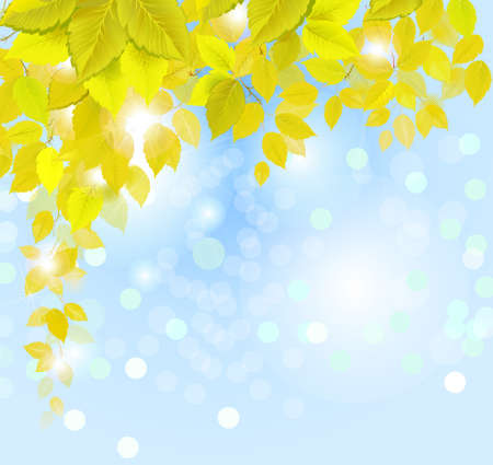 hanging autumn branch with fresh yellow leaves  Stock Vector - 14548750