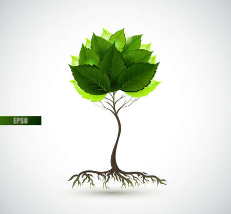 Season young tree with green leaves  Illustration