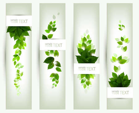 nature: set of four banners  Illustration