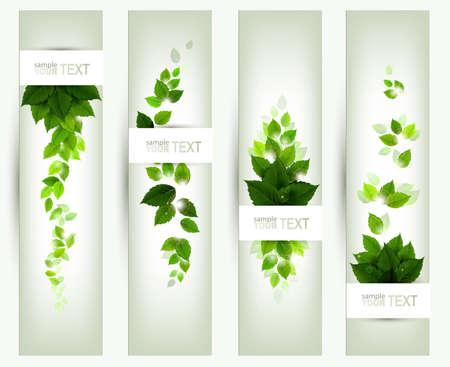 naturaleza: un conjunto de cuatro banderas Vectores
