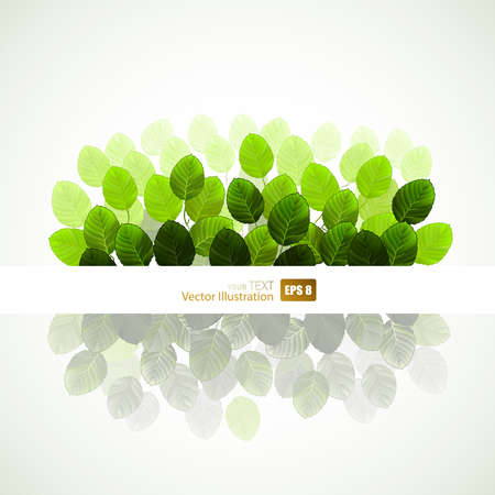 branch of fresh green leaves Stock Vector - 14548571