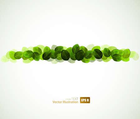 fresh green leaves design Stock Vector - 14548547