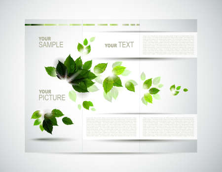 eco brochure with branch of fresh green leaves Stock Vector - 14580222