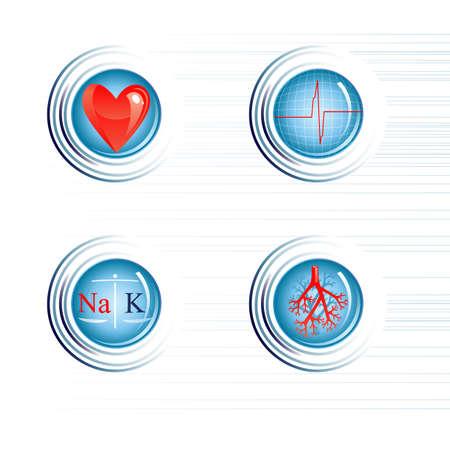 blue vessels: healthy heart