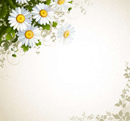 postal with a realistic chamomile on the beige background  Vector