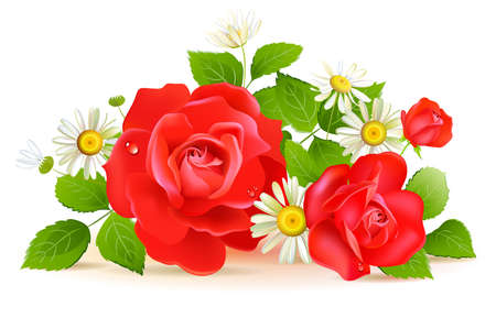 chamomile flower: Red roses with white chamomilies