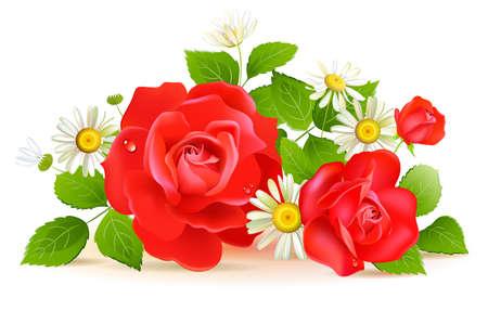 kamille: Rote Rosen mit wei�en chamomilies