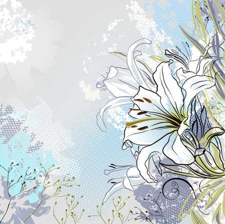 muguet fond blanc: grunge salutation-carte avec d�coration lys blancs