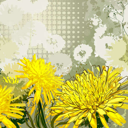 dandelions: background with yellow and white dandelions  Illustration