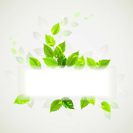 Branch with fresh green leaves Stock Vector - 15338157