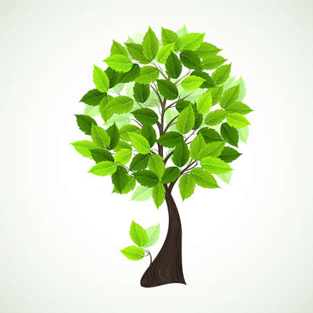 Season tree with green leaves Stock Vector - 15338147