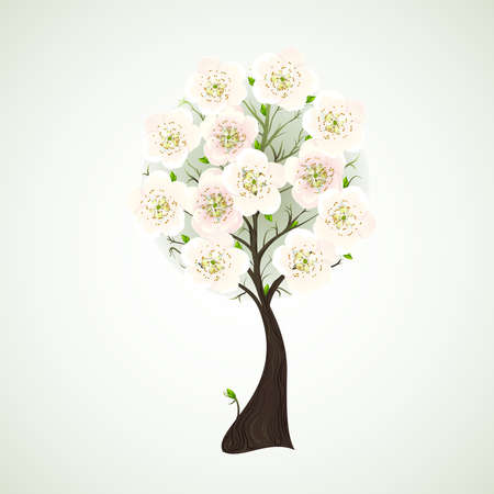 Season flowering tree with light flowers  Vector
