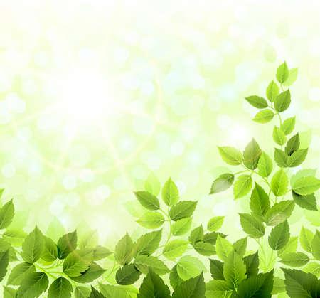 clairière d'été avec des feuilles vertes fraîches