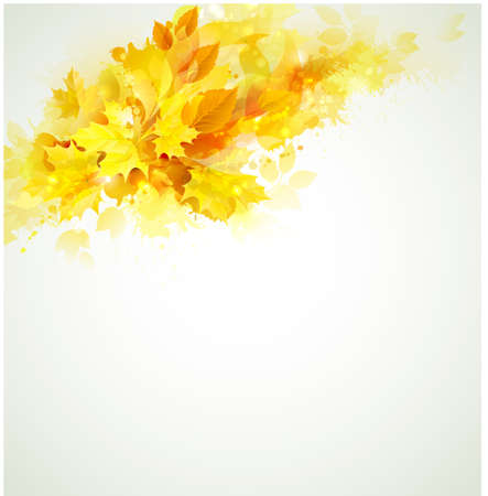 beauty spot: autumn color composition  Illustration