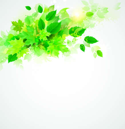 green leaves vector  Vector