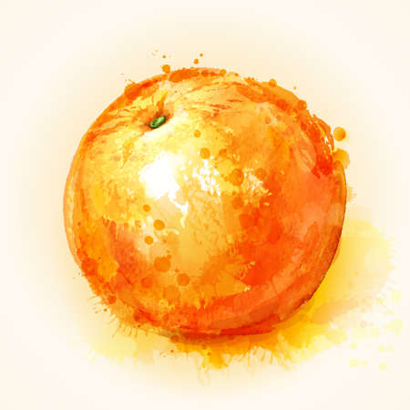 naranja fruta: efectuar naranja pintado manchas de acuarela maduras