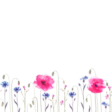 poppies: Floral glade with pink poppies and blue cornflowers. Seamless ornament.