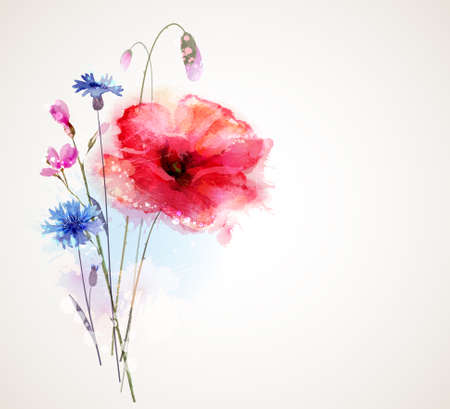 poppies: Floral bouquet with poppy and cornflower