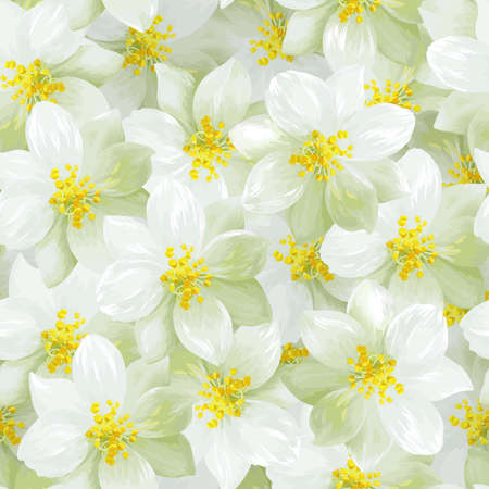 Seamless pattern of white jasmine flowers