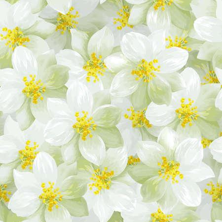 jasmine: Seamless pattern of white jasmine flowers Illustration