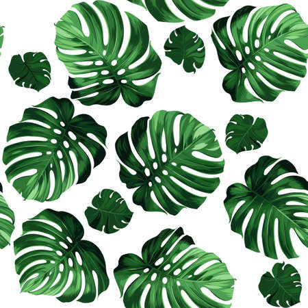 Seamless pattern of leaves monstera