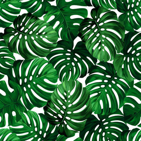 botanic: Seamless pattern of big leaves monstera. Tropical ornament.