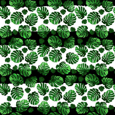 green and black: Seamless pattern of green leaves monstera on the striped background. Tropical image.