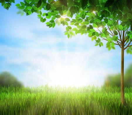morning sunrise: Season tree with green leaves on the blue sky in the morning. Sunrise is on the summer glade. Illustration