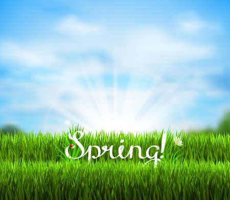 season: Written word Spring on the fresh green grass. Season background with blue sky