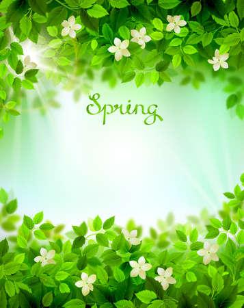 Frühling Zweige mit frischen grünen Blättern. Saison Hintergrund von weißen floralen Elementen umrahmt.