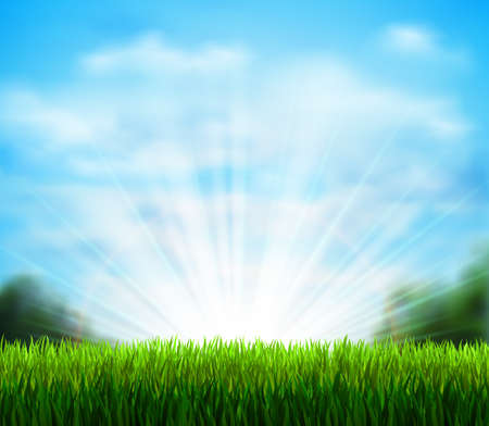 sunshine background: Spring on the fresh green glade with grass. Season background with blue sky, sunshine and white fluffy clouds.